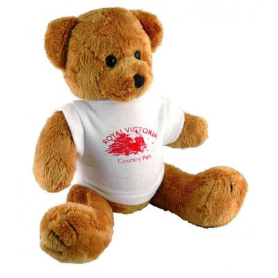 Image of Robbie Bear and T Shirt