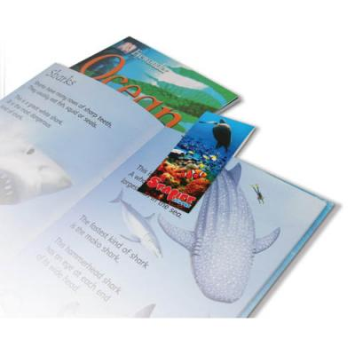Image of Folding Magnetic Bookmark