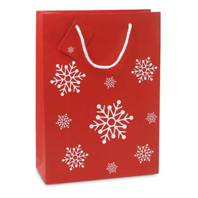 Image of Gift Paper Bag Large